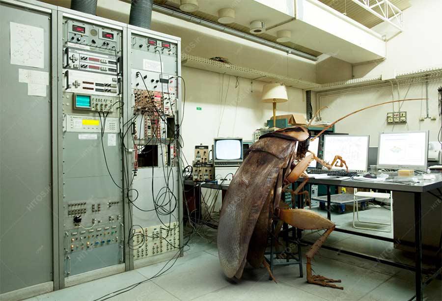 باگ در سیستمهای کامپیوتری