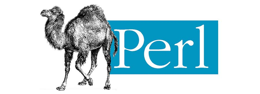 زبان برنامه نویسی Perl